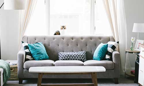 Living room with a gray sofa and blue accent pillows